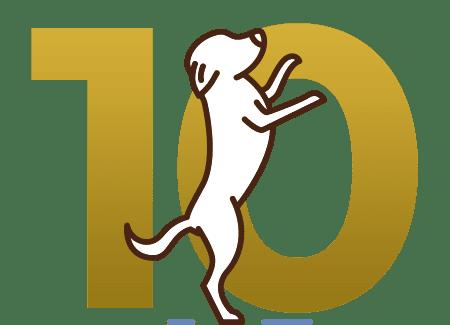 Gold Training (10 Days)
