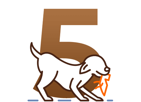 Basic Training (5 Days)