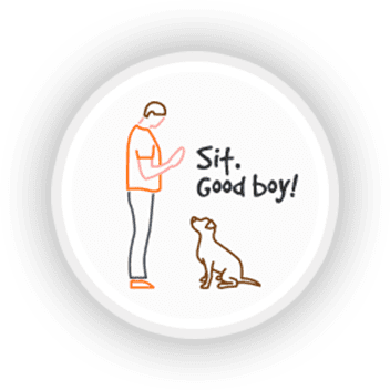 Learn to Clearly Communicate with Your Dog