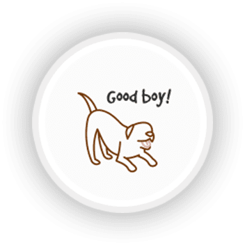 Only Positive Reinforcement Training